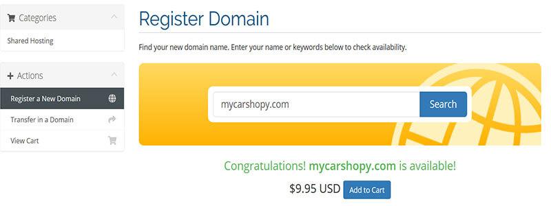 Select Domain to cart