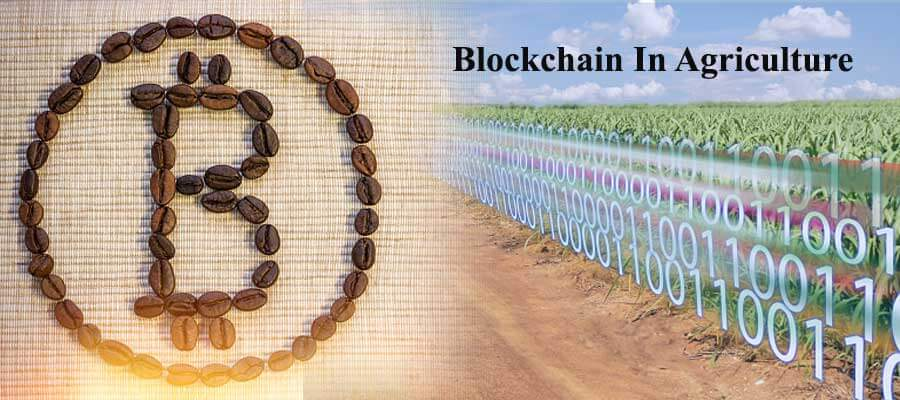 Blockchain In Agriculture: New Vision