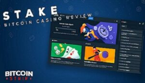 Stake Betting Site