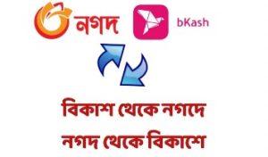 bkash to nagat and nagat to bkash